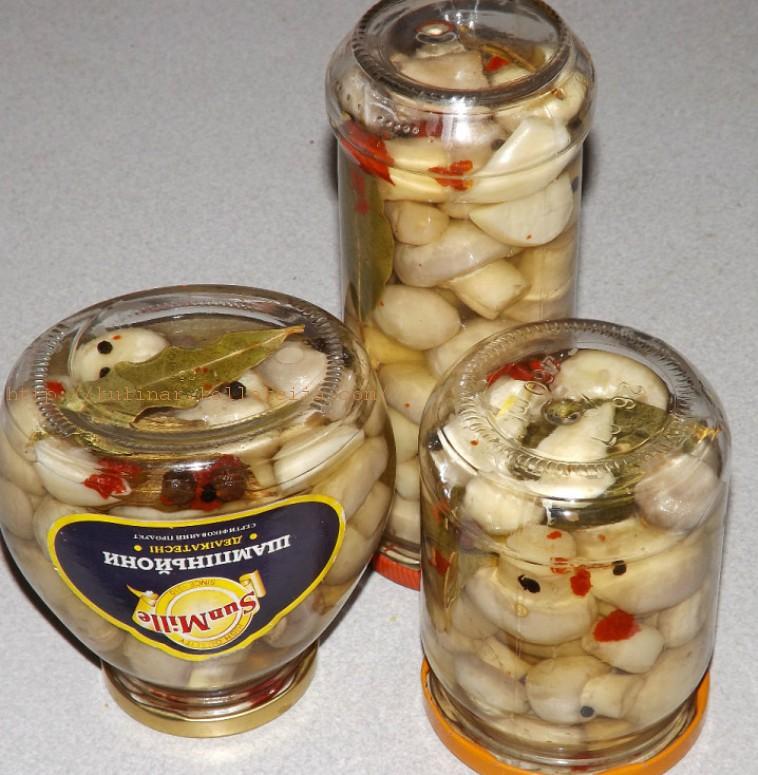 Мариновать грибы в домашних условиях рецепт 90